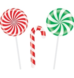 set colorful spiral candies lollipops vector image
