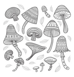 set mushrooms in boho style with ornaments vector image