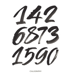 set of calligraphic acrylic or ink numbers vector image