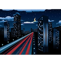 Night City Road vector image vector image