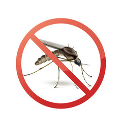 stop sign on mosquito vector image