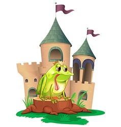 A frog in front a castle vector image