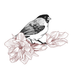 bird hand drawn in vintage style with flower vector image