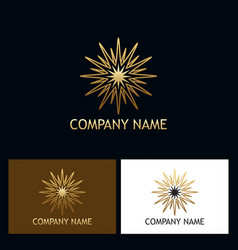 Gold star shine abstract logo vector