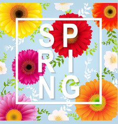 Spring flower spring banner vector