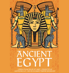 Tutankhamen pharaoh ancient egypt gods and deity vector