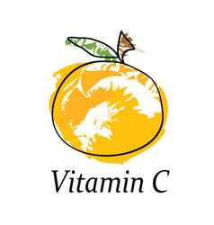 vitamin c - orange fruit - healthy diet concept vector image