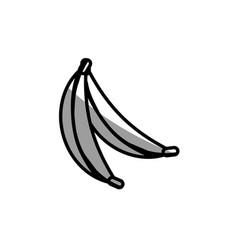 banana fruit picnic shadow vector image vector image