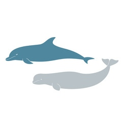 Dolphin Beluga vector image vector image