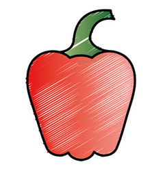 pepper fresh vegetable icon vector image