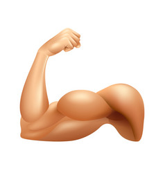 Man arm muscle isolated on white vector