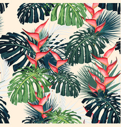 dark and bright tropical leaves with jungle plants vector image