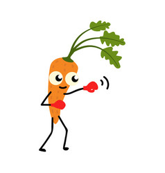 fresh carrot boxing isolated on white background vector image
