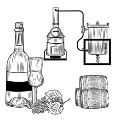 Grappa set on white background italian alcohol vector