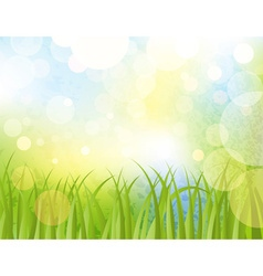 Green Summer Background vector