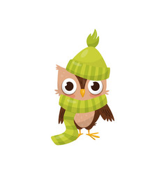 lovely little owlet wearing green knitted hat and vector image
