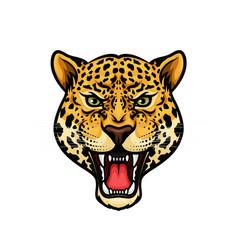 jaguar head isolated cartoon mascot design vector image vector image