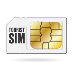 global travel tourist internet smartphone sim card vector image
