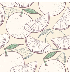 Grapefruit stylized seamless pattern vector image