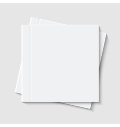 modern white book or brochure vector image
