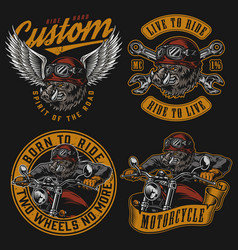 Motorcycle vintage colorful designs vector