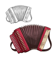 Sketch accordion musical insturment icon vector