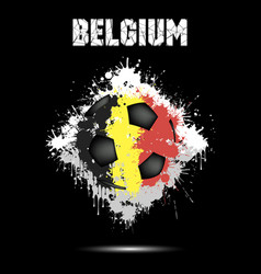 soccer ball in the color of belgium vector image