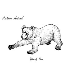 Autumn animal hand drawn grizzly bear vector