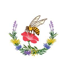 Bee logo or honey label vector