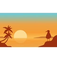 Bird on the seaside scenery silhouettes vector image