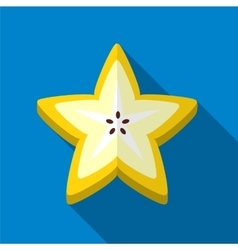 Carambola flat icon vector