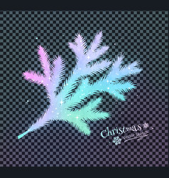 christmas spruce branch vector image