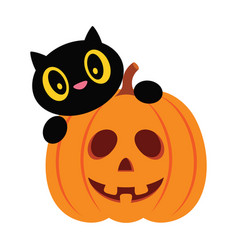 halloween pumpkin and black cat isolated on white vector image