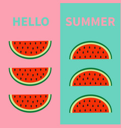 hello summer watermelon fruit icon set red slice vector image