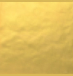 image of golden foil background vector image