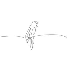 One line design parrot vector
