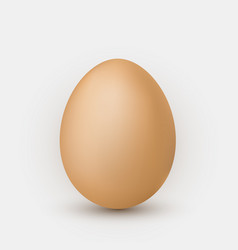 realistic brown egg with shadow on white vector image