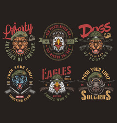 Vintage military colorful badges vector