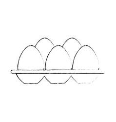 eggs carton isolated icon vector image