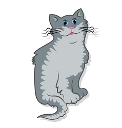 A cute gray tomcat is sitting vector image