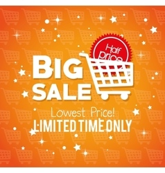 big sale limited time only lowest price buy cart vector image