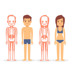 man and woman male and female skeletons isolated vector image vector image