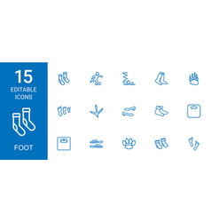 15 foot icons vector