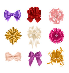 Collection of elegant colorful realistic silk bows vector
