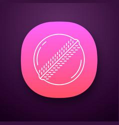cricket ball app icon professional sport vector image