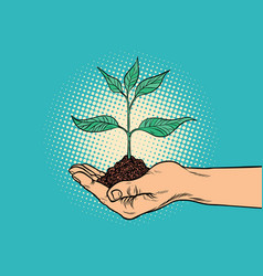 Green sprout in hand vector