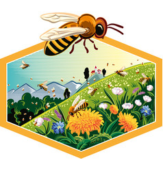 hexagon frame with worker bees on flowers vector image