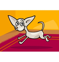 running chihuahua cartoon vector image
