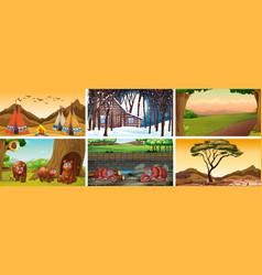 six scenes with wild animals vector image
