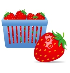 Strawberries in a basket vector